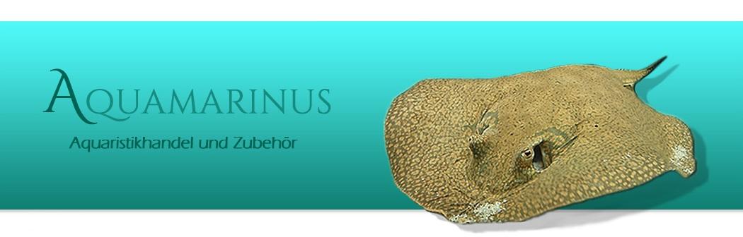 www.aquamarinus.de